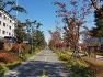 전국 도시숲분야 1등에 빛나는 포항철길숲의 가을풍경