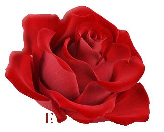 꽃 이모티콘에 대한 이미지 결과